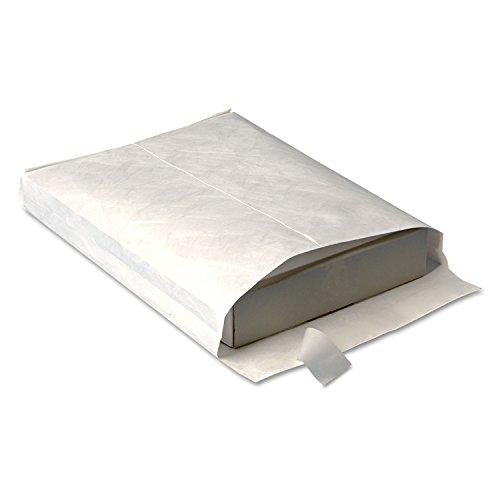 Survivor R4200 Tyvek Open-End Envelope,Plain,10-Inch x13-Inch x1-1/2-Inch,100/CT,White