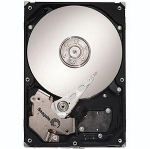 Dell St31000340Ns/G377T 1Tb 7200Rpm Raid Edition Hard Drive (Drives Dell Hard Portable)