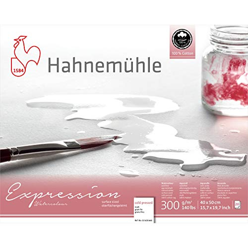 Hahnemuhle Expression Watercolor Block Cold Pressed 9x12.5 Inches 20 Sheets