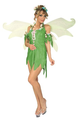 Secret Wishes Women's Enchanted Creature Adult Green Fairy Costume, Multicolor, X-Small (Enchanted Wishes Costume)