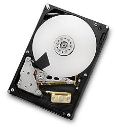 HGST Deskstar 3.5-Inch 2TB 7200RPM SATA III 6 Gbps 64 MB Cache Internal Hard Drive (0F12115)