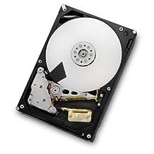 HGST Deskstar 3.5-Inch 4TB 7200 RPM SATA III 6Gbps 64MB Cache Internal Hard Drive (0F14681) (HDS724040ALE640)