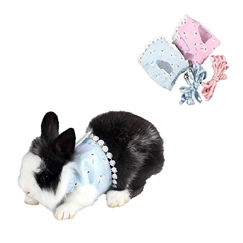 Stock Show Small Animals Outdoor Walking Vest Harness with Lead Leash Set Rabbit Hedgehog Ferret Guinea Pigs Piggies Squirrel Kitten Puppy Comfort Cotton Clothes Harness Accessory, Blue