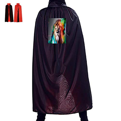 A Colorful Lion Double Hooded Robes Cloak
