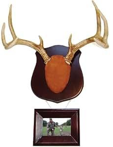 Amazon Com Dead Deer True Classic Antler Mount Kit With