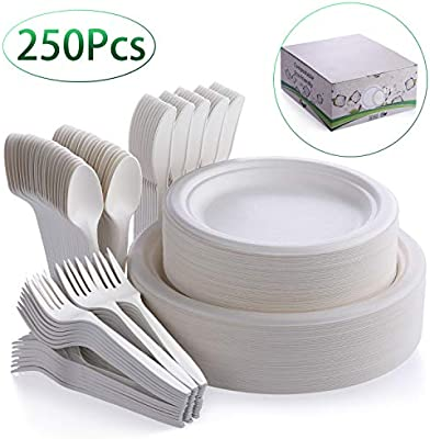 Fuyit 250Pcs Disposable Dinnerware Set, Compostable