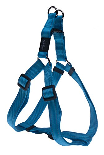 Reflective Adjustable Dog Step in Harness for Large Dogs; matching collar and leash available, Turquoise