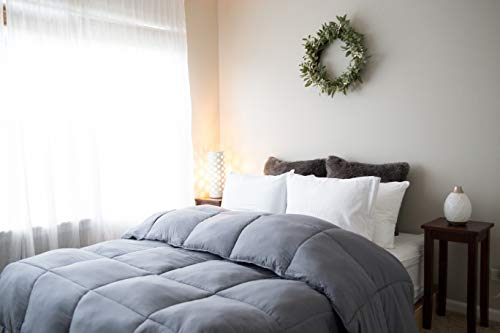 Pillowtex Dream in Color All Season Comforter (Twin/Twin XL, Grey) (Best Lucid Dream Stories)