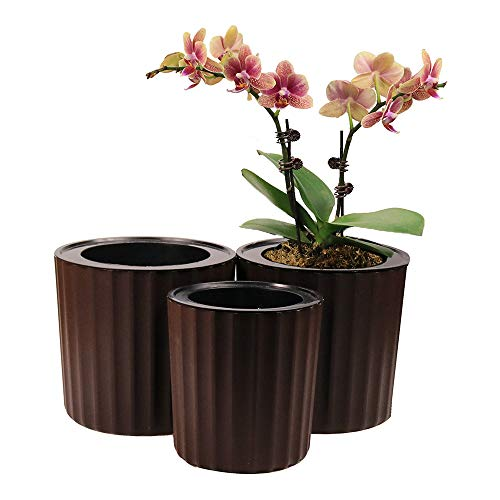 MUZHI Orchid Pot with Net and Holes, Round Self Watering Planter Pot for Indoor Plants and Flowers 3 Sets Brown