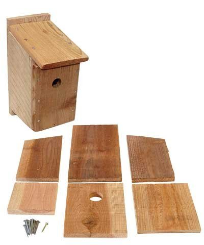 Songbird Essentials DIY Build a Birdhouse Bluebird Kit. Made of Cedar Wood. Great Project for Kids