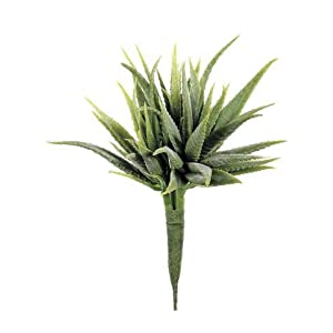 "2pc, Mini Aloe Pick in Green - 5"" Wide 47"