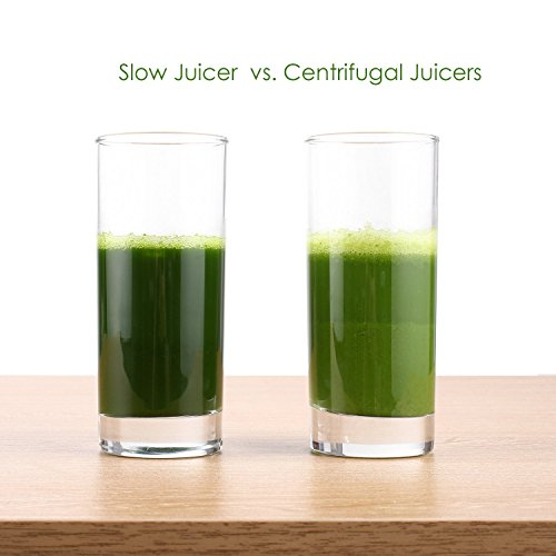 Aicok Slow Juicer Test : Aicok Juicer Slow Masticating Juicer Extractor, Cold Press Juicer Machine, Quiet Motor and ...