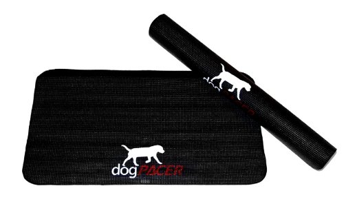 Pacer Treadmill (DogPACER Dog Treadmill Mat - Dog)