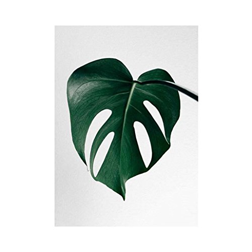 Price comparison product image wintefei Creative Plant Leaf Wall Art Painting Poster Home Bedroom Frameless Decor - 2# 50x70cm