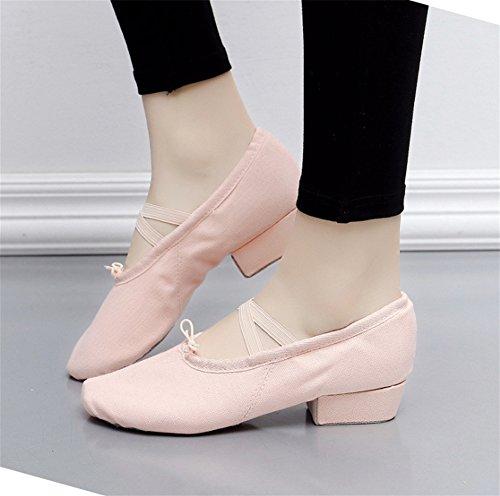 danza da da danza Scarpe da pink 39 Scarpe scarpe con da danza tacco del insegnante yoga 34 XW ventre Scarpe Flesh da Scarpe Scarpe donna WX balletto da basse morbide 7qxwxBvXH