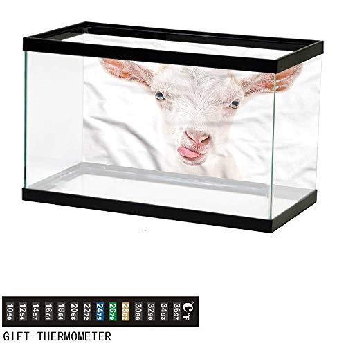 - bybyhome Fish Tank Backdrop Goat,Animal Photography Mammal,Aquarium Background,72