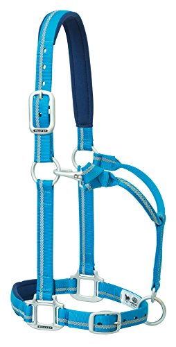 Weaver Leather Nylon Padded Reflective Adjustable Horse Halter, Average, ()