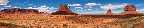 Reptile Habitat Background; Monument Valley Panorama, for 48x18x18 Terrarium, 3-sided (Custom Cage)