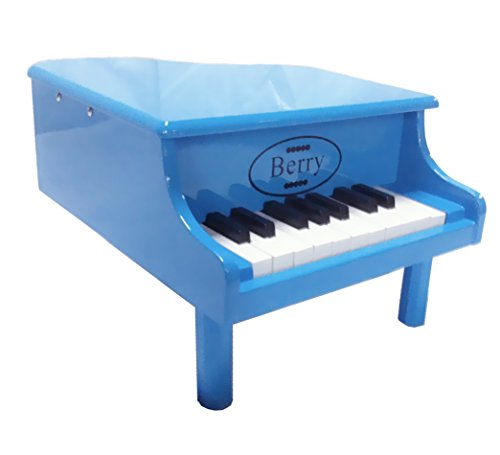 Berry Toys 18-Key Baby/Toddler Little Grand Piano, Blue (Merske Piano Kid)