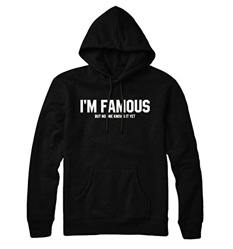 I'm Famous But No One Knows It Yet Hoodie, Hoody Mens Womens, Hoody Mens Womens, Unisex Hoodie, Gift for Friend, Gift for Girl, (St Louis 2017 Halloween)