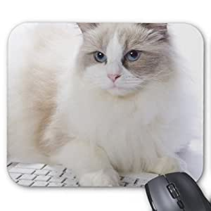 Brain114 Personalized Top-Quality Textured Surface Water Resistent Mousepad Dandelion Flower Customized Non-Slip Gaming Mouse Pads