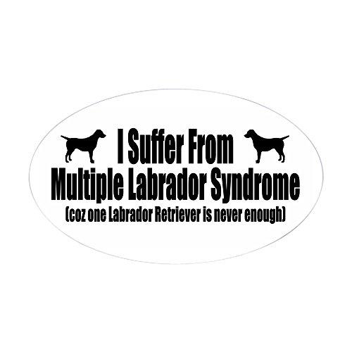 CafePress Labrador Retriever Oval Bumper Sticker, Euro Oval Car - Decorative Labrador Retriever Accessories