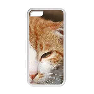 Arrogent Cat Kitty White Phone Case for Iphone 5C