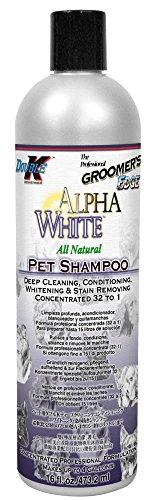 Groomers Edge - Groomer's Edge Alpha White Pet Shampoo, 16 oz