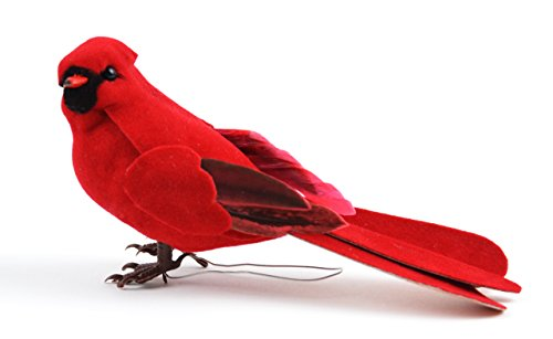 Touch of Nature 20643 Cardinal, 5-Inch, Male Cardinal]()