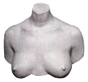 My Breast Friends Life Casting Kit