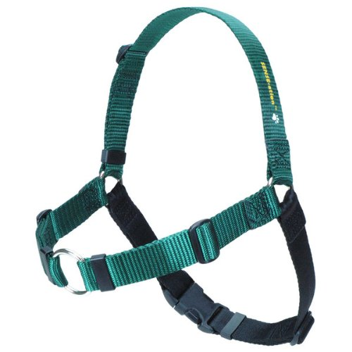The Original SENSE-ation No-Pull Dog Training Harness (Green, Medium-Large Wide)
