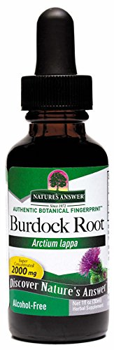 Nature's Answer Alcohol-Free Burdock Root, 1-Fluid Ounce