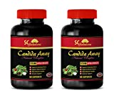 antioxidant - Candida Away Plus - Candida Overgrowth Supplements - 2 Bottles (120 Capsules)