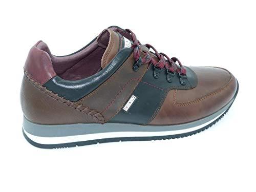 Homme Lacets à Marron pour Chaussures Ville PIKOLINOS de IYBA1Z