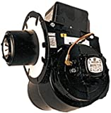 Wayne EHASR 230 Volt Burner Assembly 239-005 for Hot Water Pressure Power Washer or Steamer