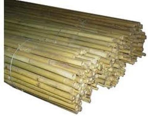 10 tubos bamboo bambú paredes o paneles divisorios postes tomates plantas rampicanti h. 210 24 a 26 cm de diámetro.: Amazon.es: Jardín