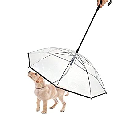 Amazon Com Paercute Pet Dog Umbrella With Leash For Small Dogs