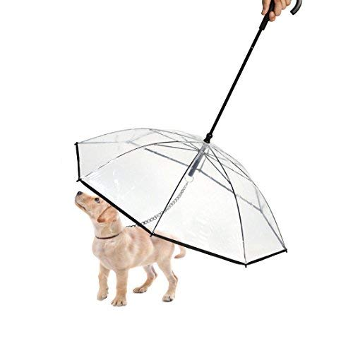(Paercute Pet Dog Umbrella with Leash for Small Dogs Puppies 20 Inches Back Length - Transparent Easy View Puppy Folding Umbrella for Walking Hiking)