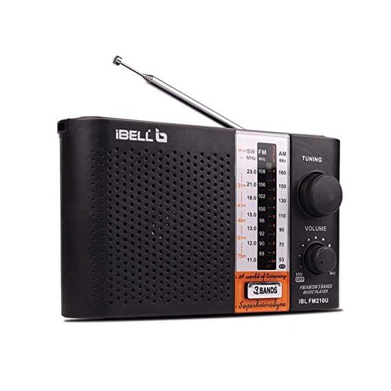 iBELL FM210U Portable FM Radio with USBSDMP3 Player & Dynamic Speaker (Black)
