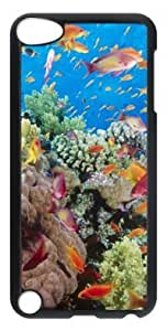 DIY Fashion Case for iPod Touch 5 Generation Black PC Case Back Cover for iPod Touch 5th with Coral Reef Southern Red Sea Near Safaga Egypt