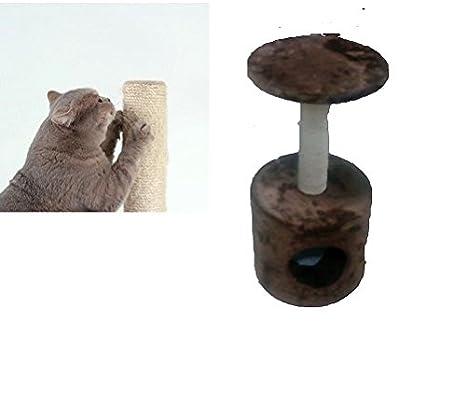 tiragraffi para gatos 60 cm Parque Juegos Gato Juegos: Amazon.es: Productos para mascotas