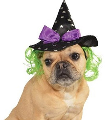 Rubie's Star Witch Hat with Hair Pet Accessory, Small/Medium