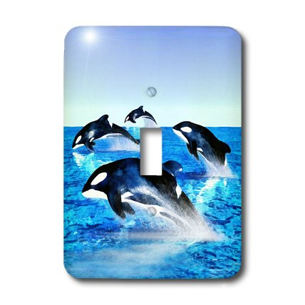 Killer Whale Light Switchplate (3dRose lsp_41472_1 Killer Whale Pod Single Toggle Switch)