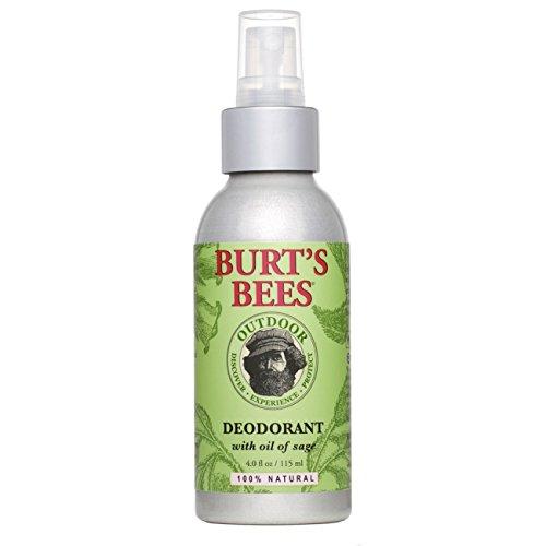 Burt's Bees 100% Natural Deodorant, 4 Fluid Ounces (Pack of 2)