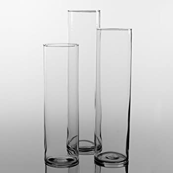 Amazon Eastland Tall Cylinder Vases Set Of 18 Home Kitchen