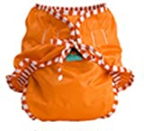 Kushies Reusable Cloth Swim Diaper Bottoms for Boys or Girls (X-Large, Orange)