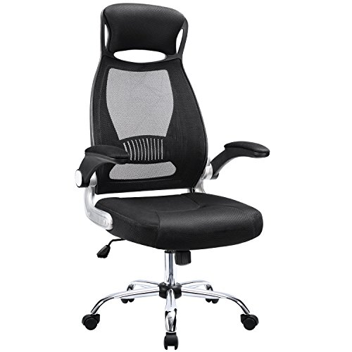 Furmax High Back Office Chair Mesh Desk Chair with Adjustable Armrest,Computer Swivel Task Chair with Ergonomic Headrest (Black)