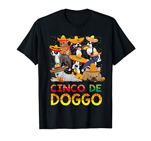 Boston Cinco de Doggo T-Shirt Cinco de Mayo Party Shirt Gift