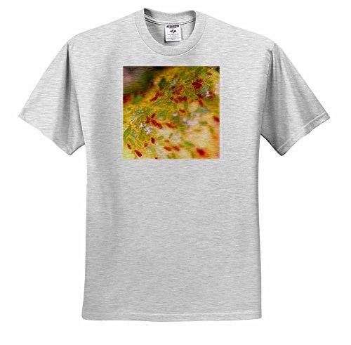 henrik-lehnerer-designs-animal-green-and-brown-aphids-infesting-a-rose-bush-t-shirts-youth-birch-gra