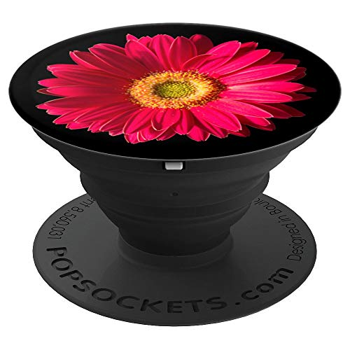 PhotoPops: Pink Gerbera Daisy - PopSockets Grip and Stand for Phones and - Gerberas Pink